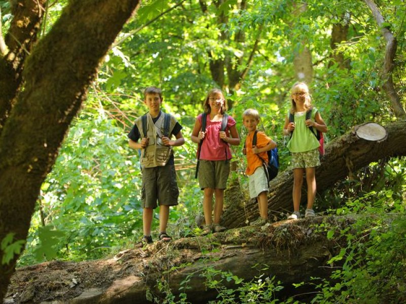 Howell Nature Center Summer Camps
